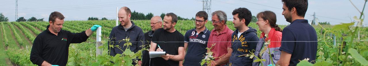 viticulture vous former, formez vos salariés
