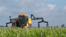 Traitement et protection du vignoble chambre d - Chambre agriculture gironde ...
